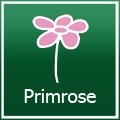 Primrose Gutscheine - März 2018